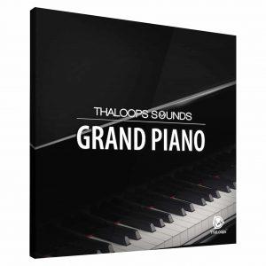Grand Piano Steinway Instrument