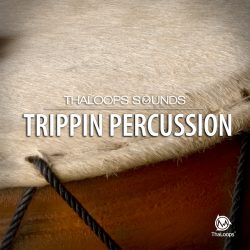 Percussion Loops Collection