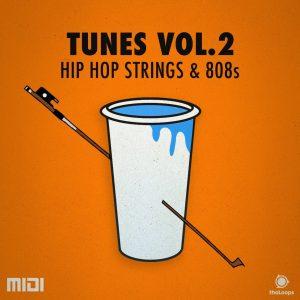 Hip Hop String Loops